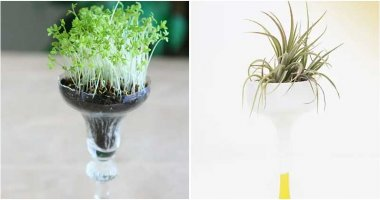 Pretty Things To Do With Your Wine Glasses