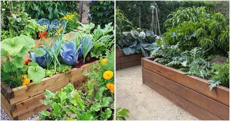 10 Benefits Of Raised Garden Beds