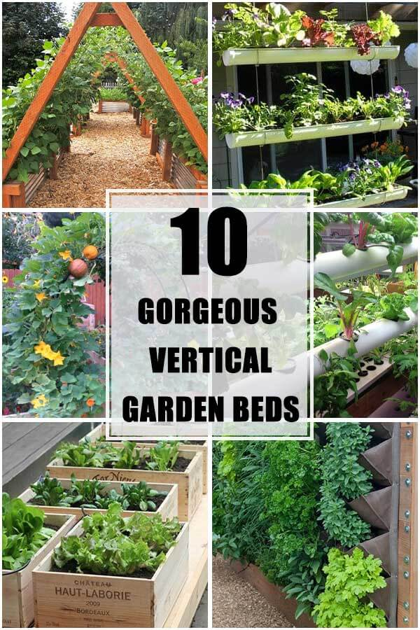 10 Vertical Gardening Bed Ideas To Grow Your Favorite Veggies