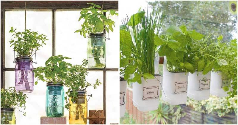 12 Ideas To Make Mini Gardens For Your Window