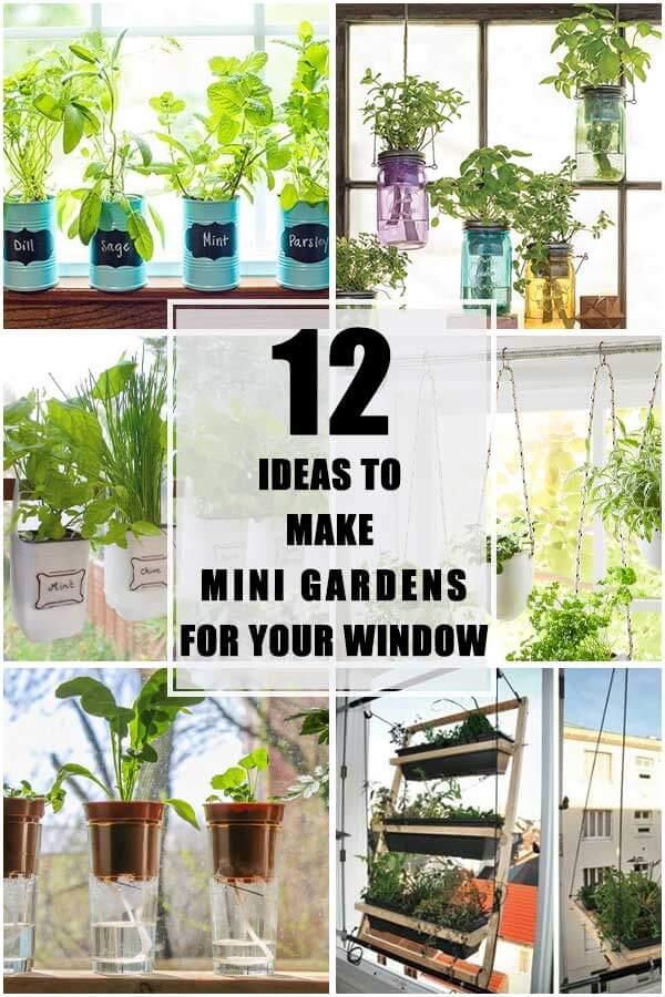 12 Ideas To Make Mini Gardens For Your Window