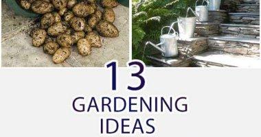 13 Gardening Ideas With Bucket