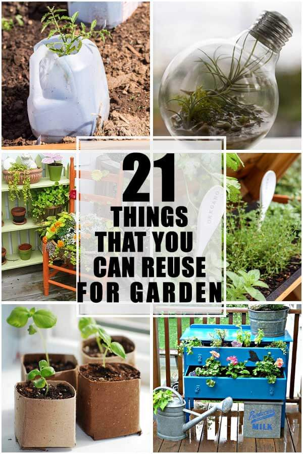 21 Everyday Things That You Can Reuse For Your Garden