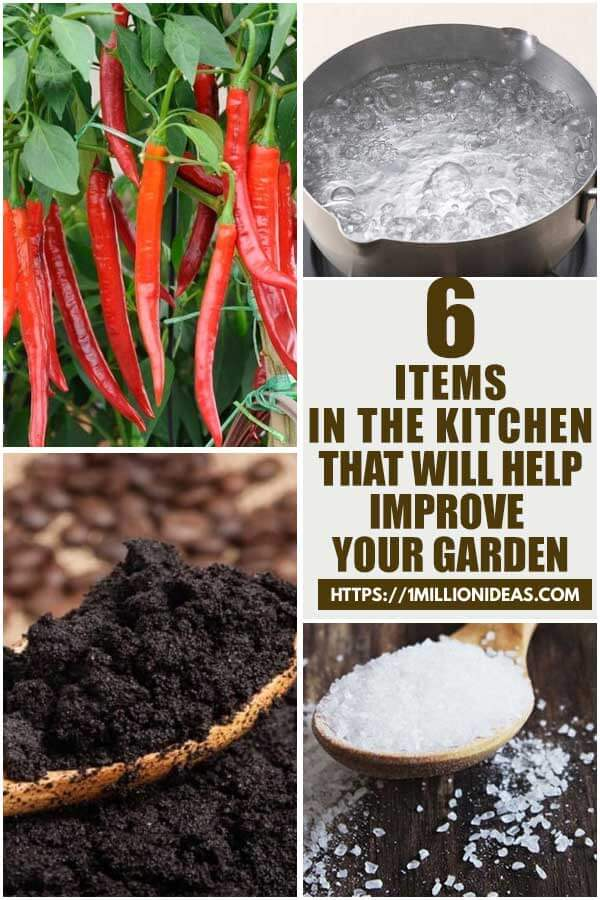 6 Items In The Kitchen That Will Help Improve Your Garden