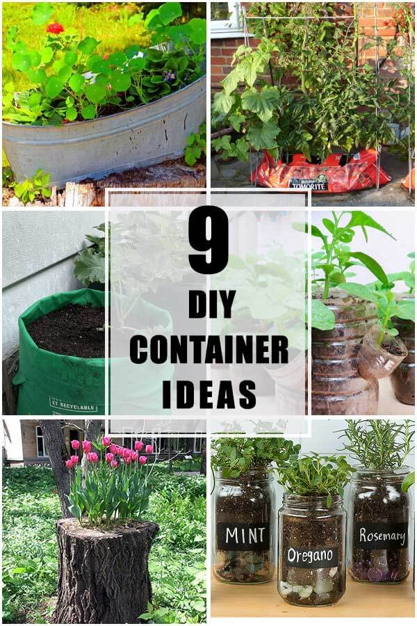 9 DIY Container Ideas To Grow Your Favorite Vegetables
