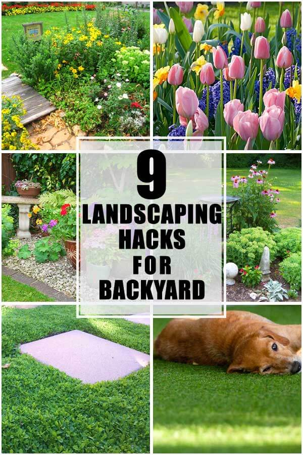 9 Landscaping Hacks For Your Backyard