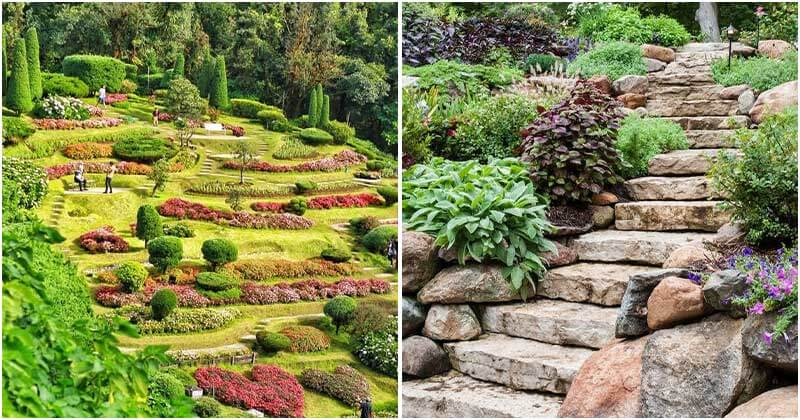 10 Hillside Landscaping Ideas