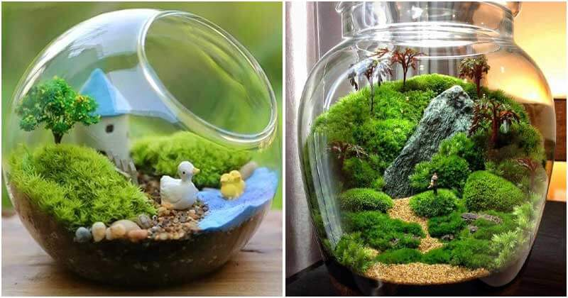 11 Indoor Moss Gardens To Decorate Your House