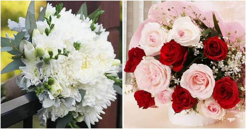 12 Beautiful and Meaningful Birthday Flowers According to Months