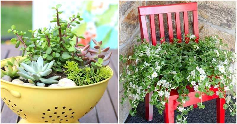 15 Creative Garden Container Ideas