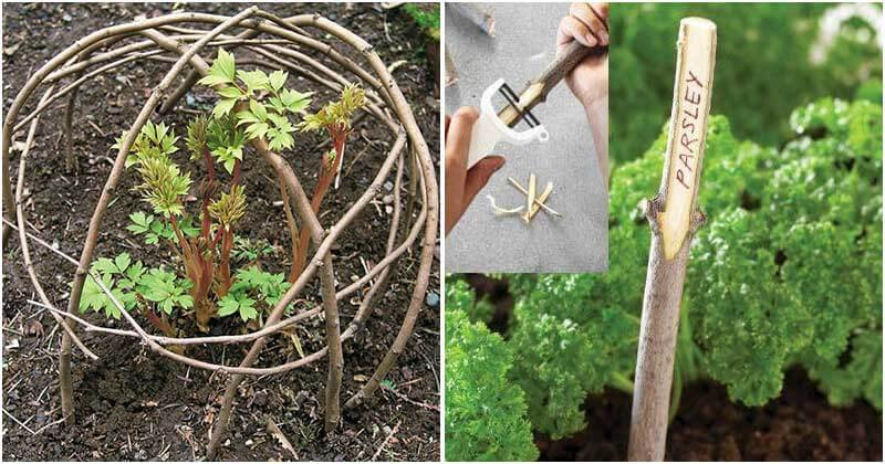 16 Cheap Garden Ideas That Used With Sticks and Twigs