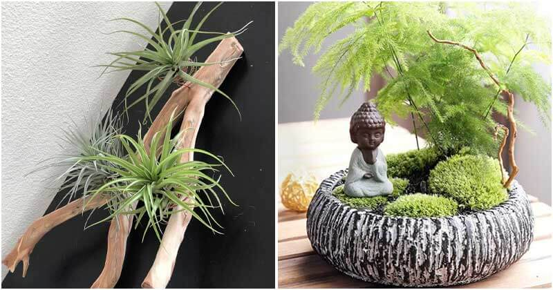 14 Great Tiny Garden Ideas To Place On Your Tabletop