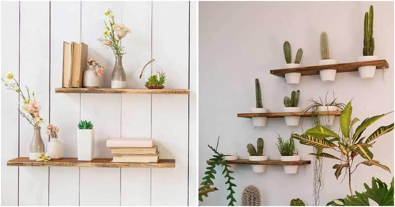 19 Delightful Plant Shelves Ideas For Decorating Indoor