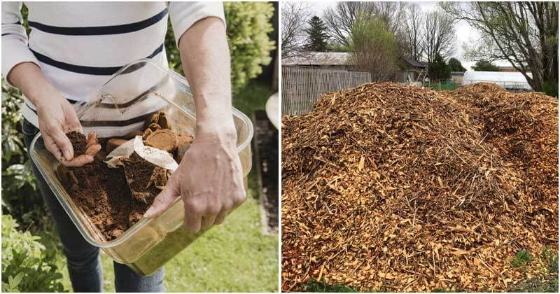 19 Types Of Mulch For Your Garden