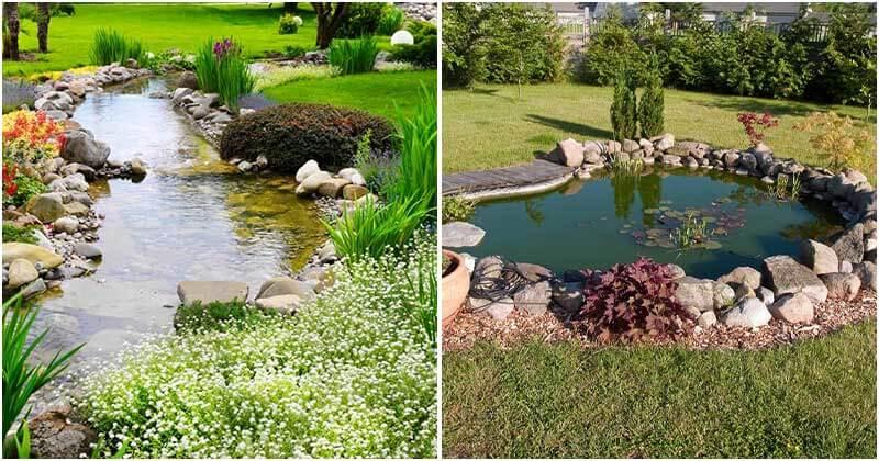 21 Impressive Water Garden Ideas
