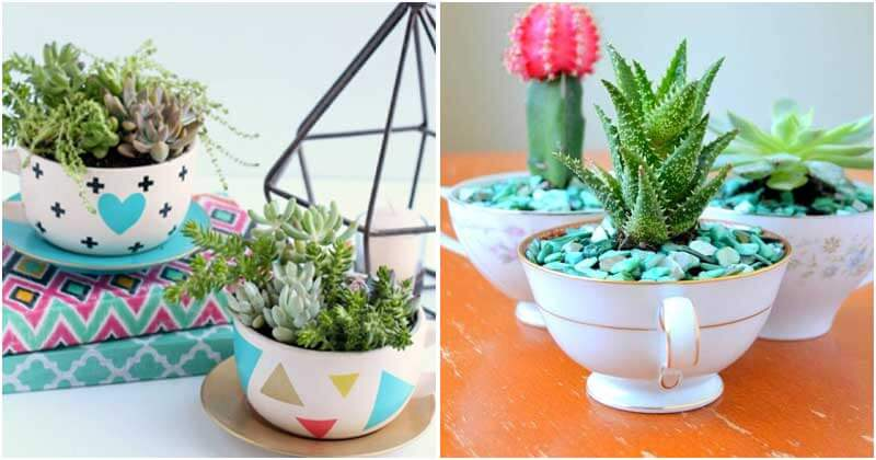 26 Enchanting Teacup Mini Garden Projects