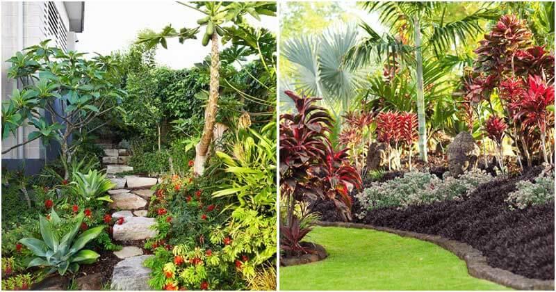 13 Impressive Tropical Garden Design Ideas