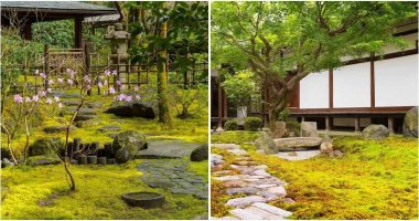 22 Amazing Landscaping Ideas With Moss Rocks