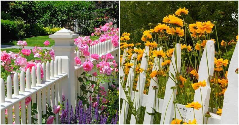 18 Gorgeous White Fence Landscaping Ideas