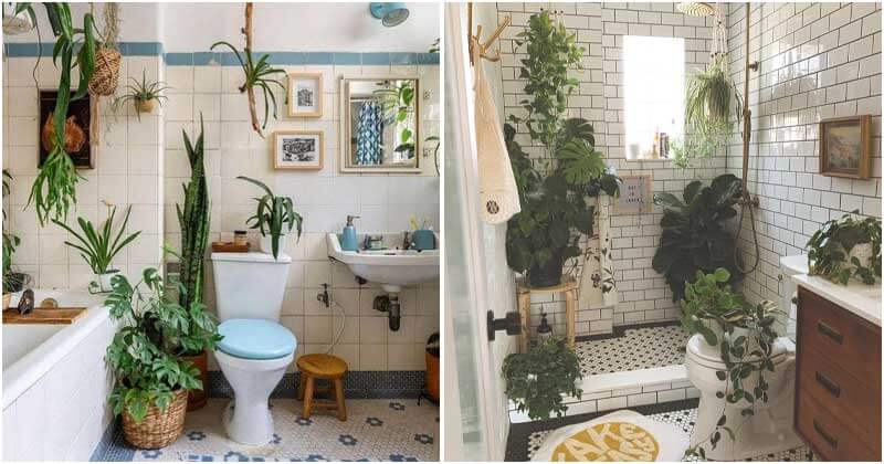 10 Beautiful Bathroom Vanity Plant Ideas