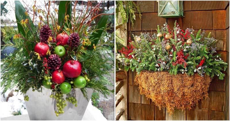 10 Stunning Winter Container Garden Ideas