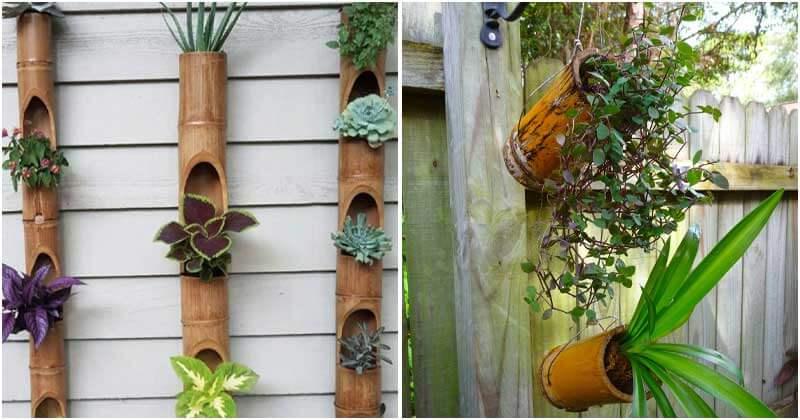 13 Beautiful DIY Bamboo Planter Ideas