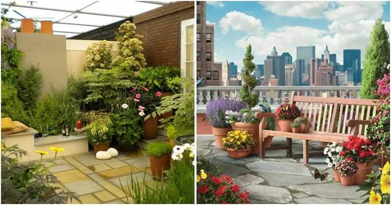 17 Beautiful Terrace Garden Designs