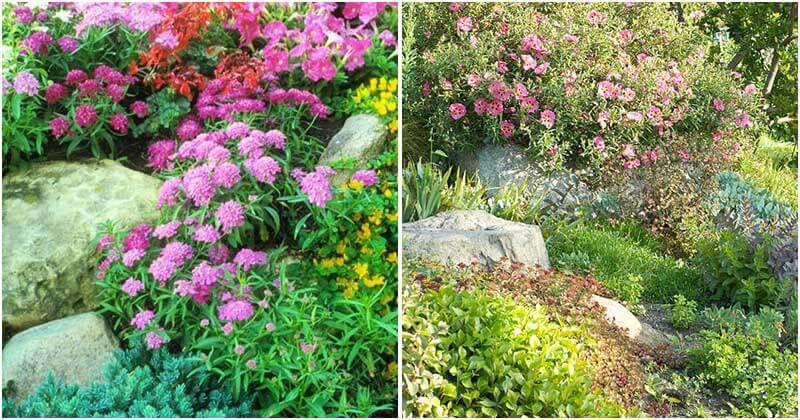 17 Rock Design Ideas For Your Garden