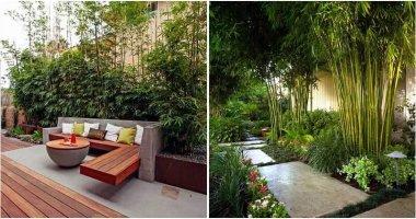 30 Bamboo Ideas For The Garden