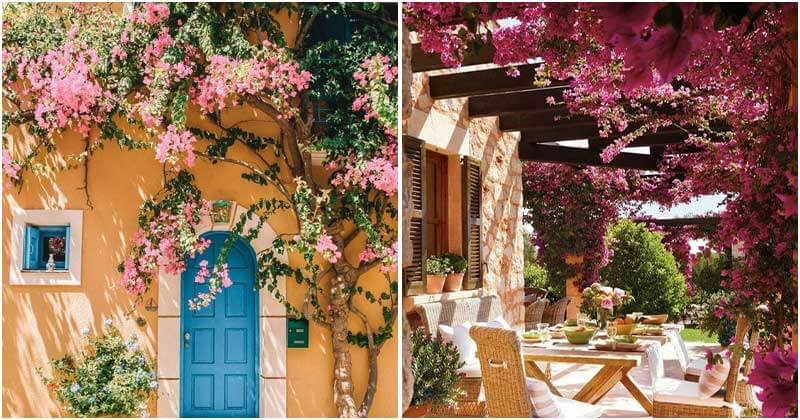 Flower Decorating Ideas For Outside Space Of Your House