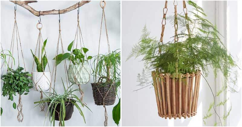 18 Unique Hanging Basket Ideas For Your Indoor Plant