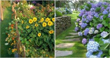 24 Gorgeous Colorful Flower Garden Ideas