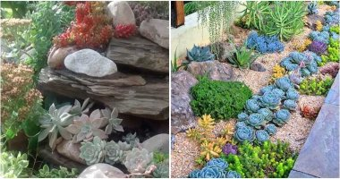 Catchy Succulent Garden Designs For Landscaping Outdoor