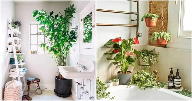 16 Impressive Bathroom Garden Ideas