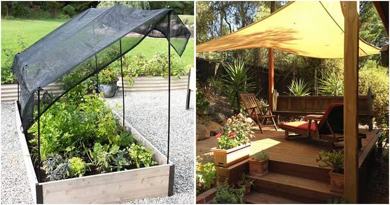 During sunny summer days, a shady garden is a need for every family. It not only has the effect of