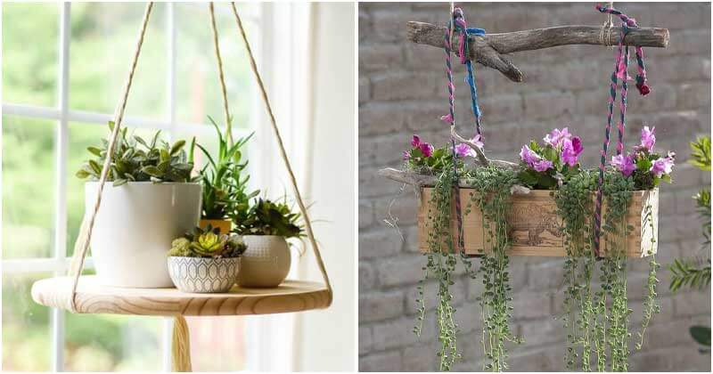 28 Unique Succulent Hanging Garden Ideas