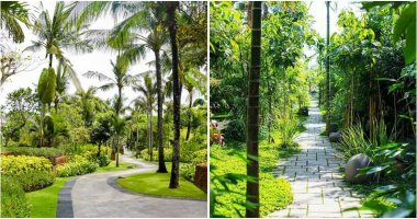18 Tropical Garden Pathway Ideas