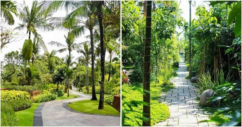 18 Tropical Garden Pathway Ideas