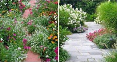 Beautiful Flower Garden Path Ideas