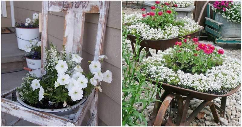 27 Gorgeous Repurposed Garden Container Ideas