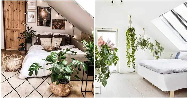 25 Charming Plant-Filled Attic Room Ideas