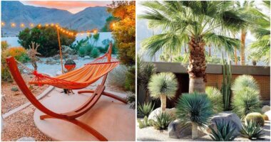 26 Amazing Desert Landscape Ideas For Your Garden