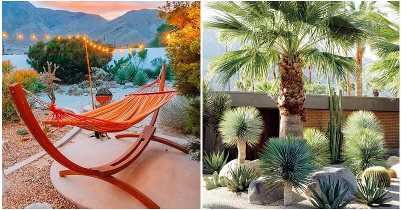 26 Amazing Desert Landscape Ideas For Your Garden