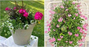 25 Beautiful and Creative Spring Garden Ideas