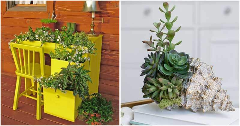 24 Unique and Creative Garden Container Ideas