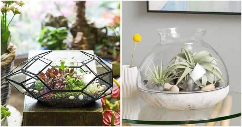 30 Miniature Terrarium Garden Ideas