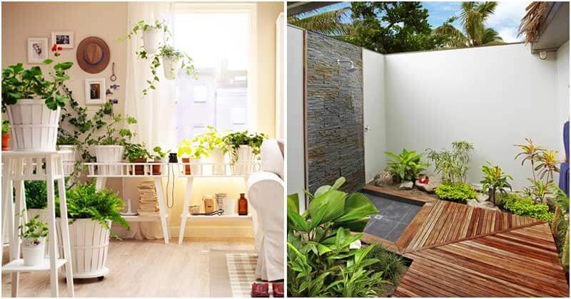 27 Ways to Decorate Home With Plants and Greenery