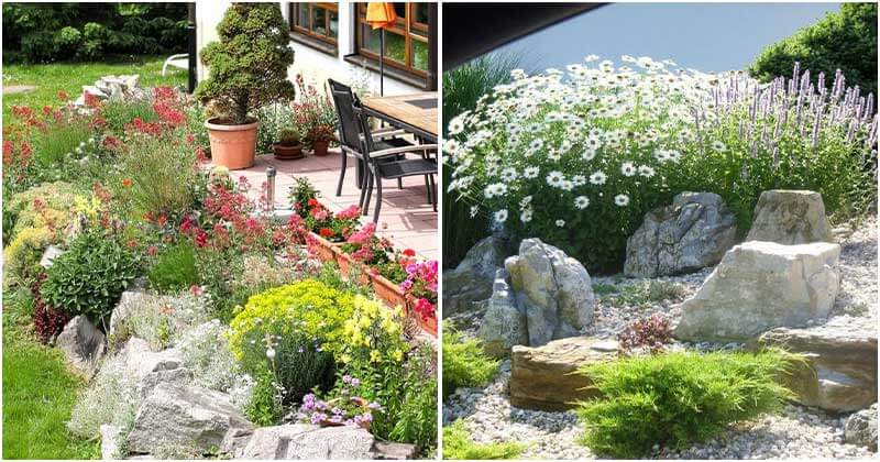 18 Impressive Rock Garden Ideas