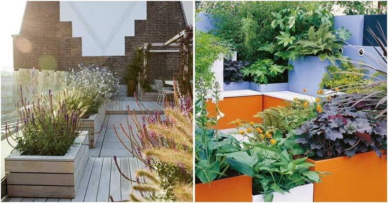 20 Eye-catching Open Spaces with Plant Boxes