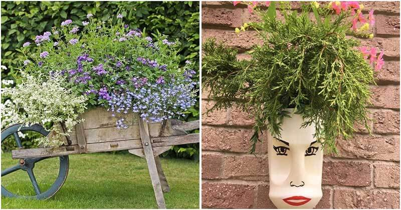 Creative and Cool Planter Ideas For Any Garden